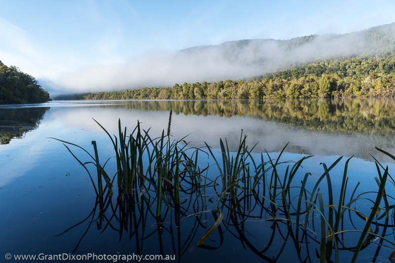 image of Gordon River early morning  1