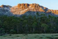 Dawn light on Massif Mtn, Cradle Mountain - Lake St Clair National Park, Tasmanian Wilderness World Heritage Area.