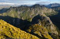NEW ZEALAND, Fiordland National Park. Dark Cloud Range. Sunrise, from Needle Peak.