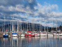 AUSTRALIA, Tasmania, Hobart, Bellerive. Yachts moored at marina, Mt Wellington beyond.