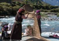 Women winnowing grain, Tsum Valley, Manaslu Circuit trek, Nepal