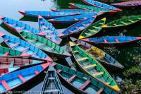NEPAL. Brightly-painted doongas (boats) moored at edge of Phewa Tal (Phewa Lake).