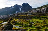 NORWAY, Northern fjords, Sunnmore Alps. Moss covered moraine, Smorskretinden (1631m) rising beyond.