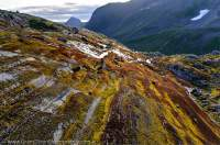 NORWAY, Northern fjords, Sunnmore Alps. Moss covered gneiss rock slabs, smoothed by past glaciation, Smorskretinden rising beyond.
