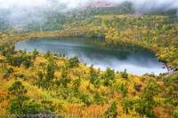 Lake Oenone, Mt Olympus, Cradle Mtn - Lk St Clair National Park, Tasmanian Wilderness World Heritage Area.