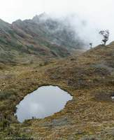 Tarn and glacial valley below Mt Scorpio, Star Mountains, Papua New Guinea.