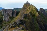 Southern summit of Mt Scorpio, Star Mountains, Papua New Guinea.